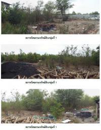 ที่ดินพร้อมสิ่งปลูกสร้างหลุดจำนอง ธ.ธนาคารกรุงไทย หน้าไม้ ลาดหลุมแก้ว ปทุมธานี