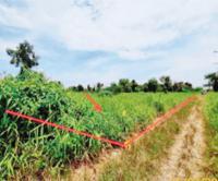 ที่ดินว่างเปล่าหลุดจำนอง ธ.ธนาคารกสิกรไทย บึงบา หนองเสือ ปทุมธานี